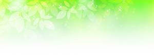 green-pop_bg