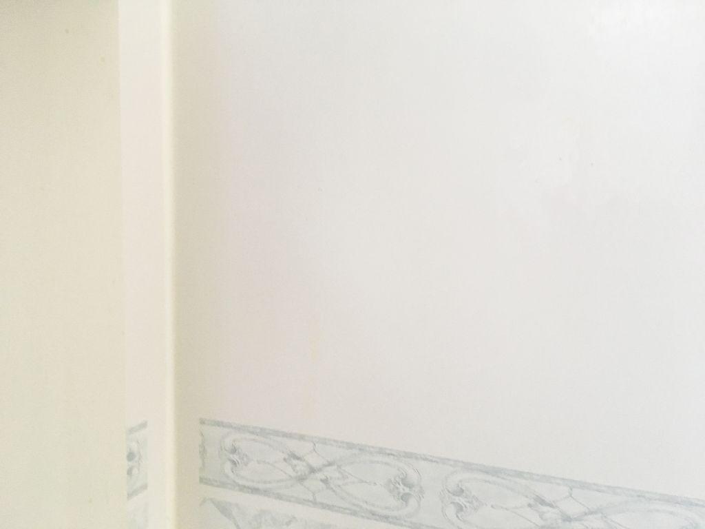 サビを落とした後の壁